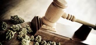 8 Surprising Supporters of Legalizing Marijuana