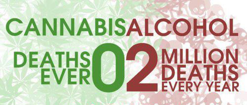 Medical Marijuana as Treatment for Alcoholism