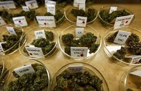 Choosing Your Medicine: How To Select Medical Cannabis?