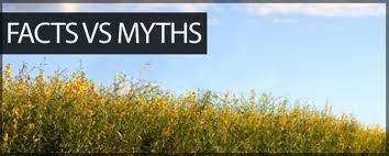 Hemp Vs. Marijuana: Myths & Realities