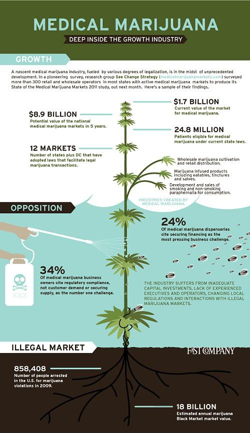 Marching on with Medical Marijuana: Top Marijuana News for February