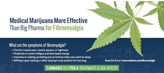 Fibromyalgia: Big Pharma vs Medical Cannabis – United