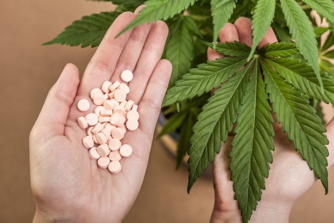 The Answer to Prescription Drug Overdoses: Legal Medical Cannabis