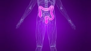 """""""A Cannabis Patient's Guide to Crohn's Disease"""" by Crohn's Patient Daniel Towns"""