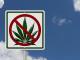 Implications of Marijuana Legalization