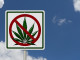 Implications of Marijuana Legalization