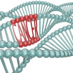 Cancer Cause Hiding In Dna Strand