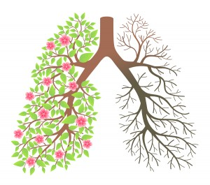 Lungs. Effect after smoking and disease on a white background
