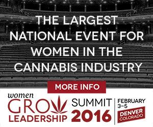 WG_Leadership_Summit_2016_AD_NEW_300x250