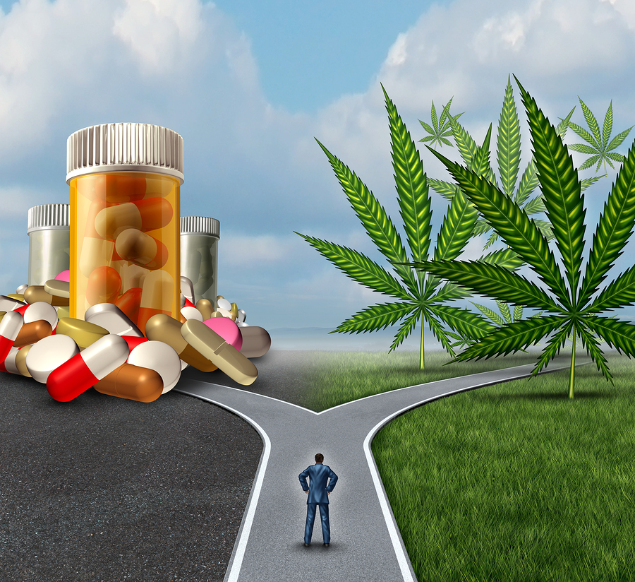 medical cannabis and marijuana drugs Can medical marijuana replace or lower the dose of some of does marijuana interact with pharmaceutical drugs interactions of cannabis with other drugs in man.