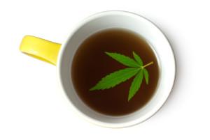 Hemp (Cannabis) leaf in cup of tea