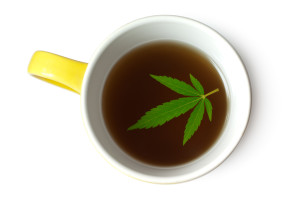 Hemp (Cannabis) leaf in cup of tea
