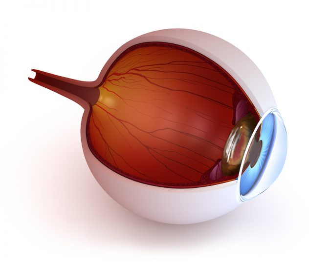 A Patients Guide to Using Medical Marijuana for Glaucoma