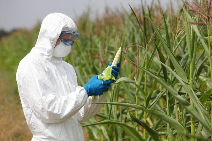 DARK ACT Defeated, GMOs Still A Major Health Risk! By Dr. Desaulniers