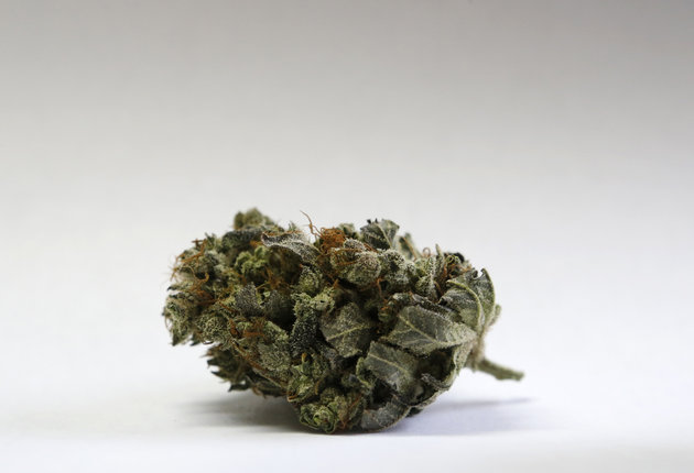 Cannabinoids Part 1: What is THC Exactly?