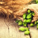 Beer brewing ingredients Hop in bag and wheat ears on wooden cra