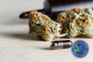 Medical Marijuana Patients Marijuana, Fight the Stigma