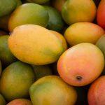 Mangoes Background - Mango Fruit