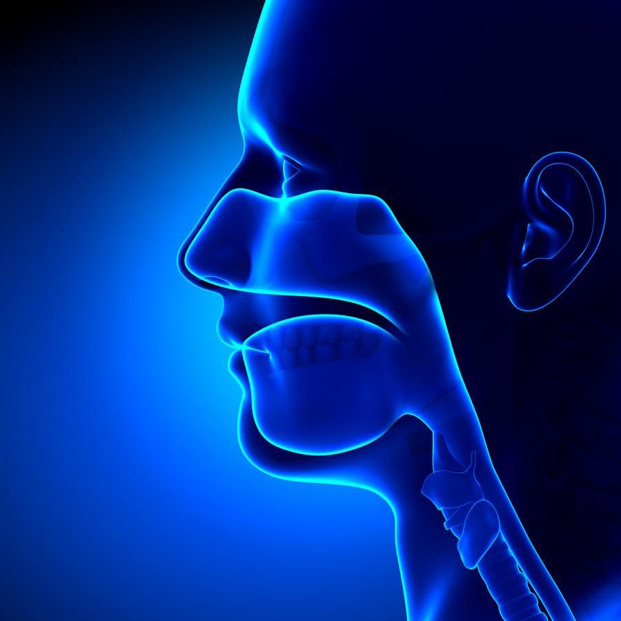 Sinusitis and Marijuana Information: Treat Sinusitis With Cannabis