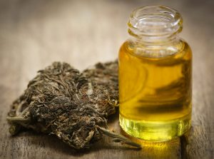 The Entourage Effect; Whole Plant Extracts: So Much More than THC and CBD!