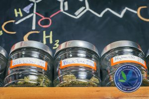 Medical marijuana jars against board with THC formula - cannabis