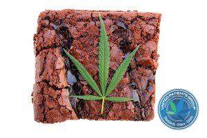 Cooking with Cannibals. Genuine Medical Marijuana Chocolate Brow