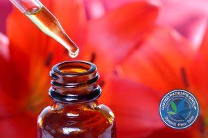 Herbal Medicine Dropper Bottle With Flowers
