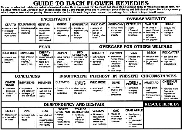 Bach Flower Remedies For Women