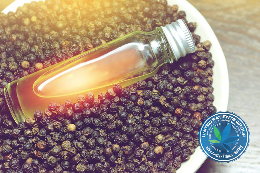 The Natural Benefits of Black Pepper Oil in Fighting Dis-Ease
