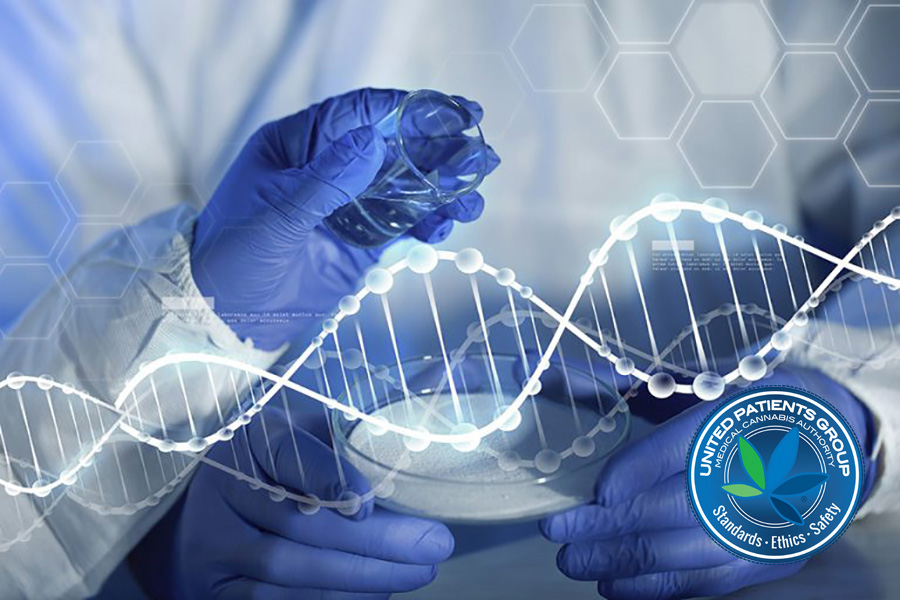 Using genetic raw data and technology to support paths to remission: Innovations in complementary cancer care