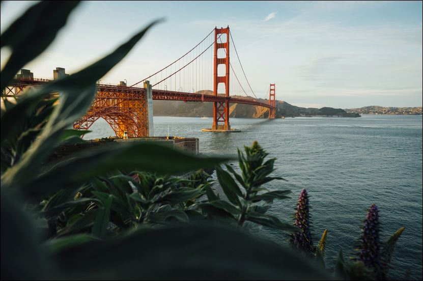 Top 5 Dispensaries in the San Francisco Bay Area