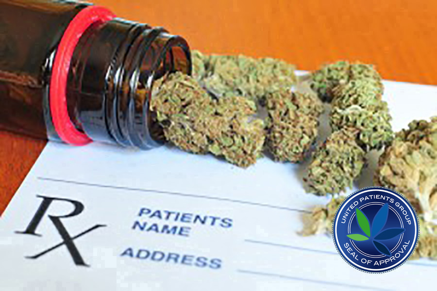 A Brief Guide to Understanding Medical Cannabis